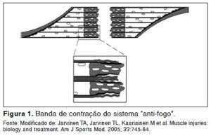 sistema antifogo