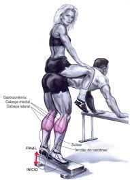exercicio para as pernas