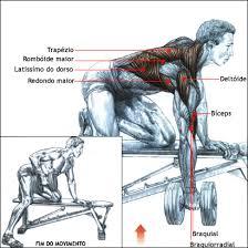 costas fortalecimento