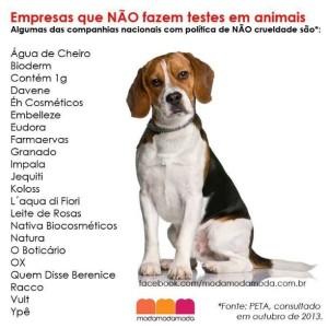 beagles-teste-em-animais_zps611b0344