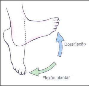 Dorsiflexao-e-Plantiflexao-dos-pes