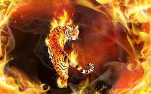 Fogo e tigre