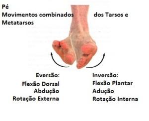 Inversão_e_Eversão