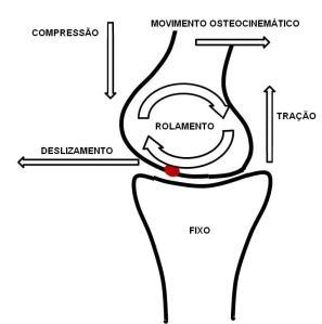 osteocinematico e artrocinematico