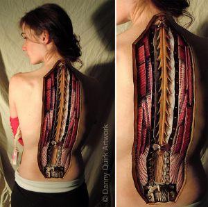 anatomia da coluna dorsal