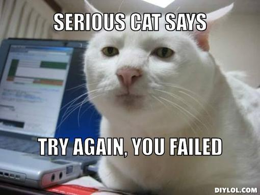 serious-cat-says-try-again-you-failed