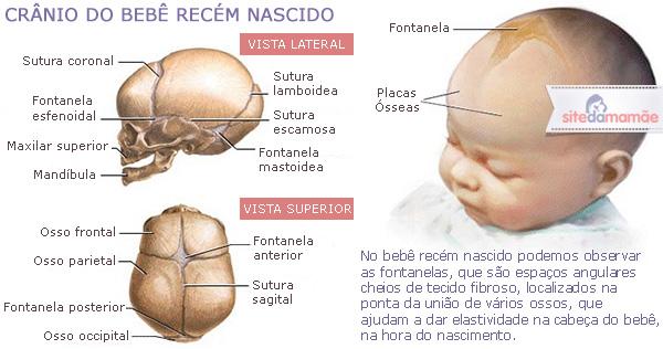 saiba-tudo-sobre-a-moleira-do-bebê21